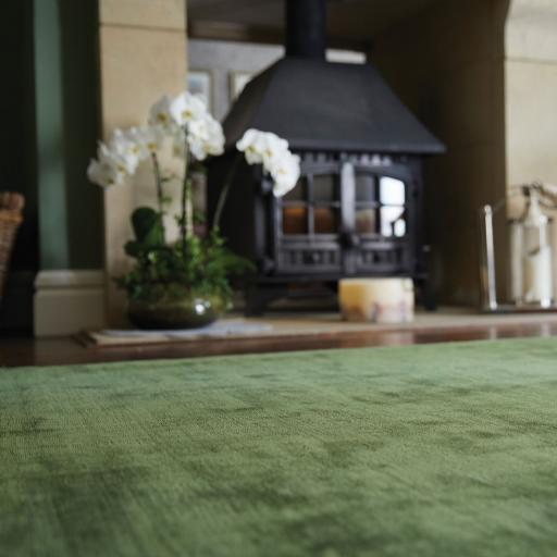 Luxury Plain Karma Guru Soft Silky Viscose Rug in Fern Green